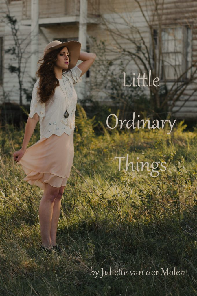 Little Ordinary Things